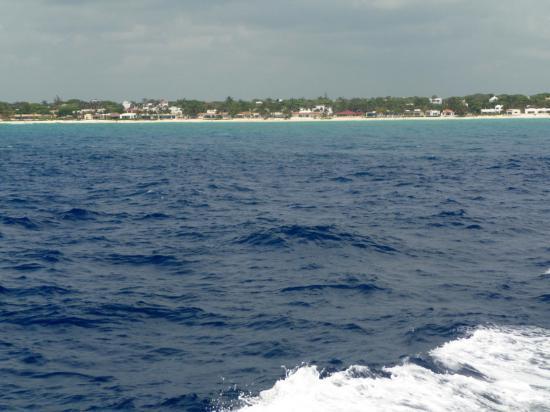 Alberto's Beach Bar Restaurant : hacia Cozumel en el ferry