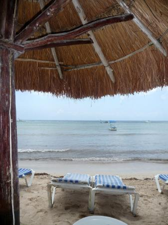 Alberto's Beach Bar Restaurant : el club es agradable, la playa con muchas piedras