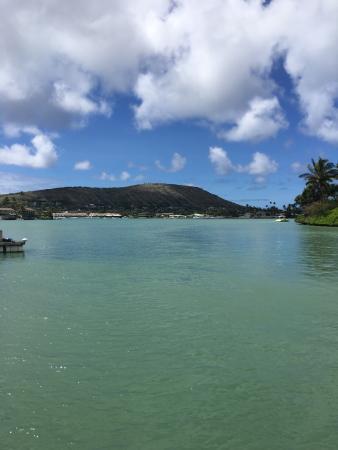 H2O Sports Hawaii - Seabreeze Watersports: photo0.jpg