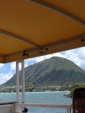 H2O Sports Hawaii - Seabreeze Watersports: photo2.jpg
