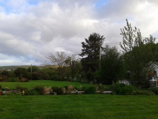 Moher House Bed and Breakfast: Neighbors