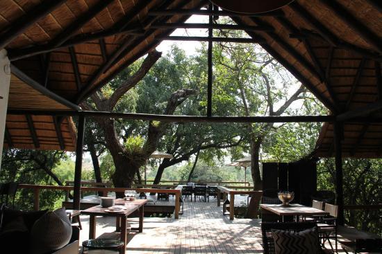 Londolozi Private Game Reserve: Open air dining veranda