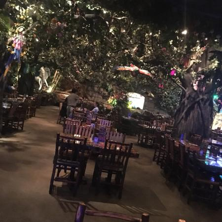 Rainforest Cafe Menu Prices Katy