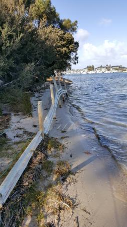 East Fremantle, Australia: Just next to Zephrys, dogs can walk off lead