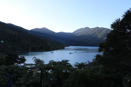 Endeavour Inlet, New Zealand: view from the room