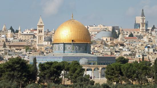 Israel Reiseleiter Ushi Engel - Day Tours