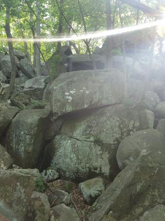 Quakertown, PA: Top Rock Trail at Nockamixon State Park