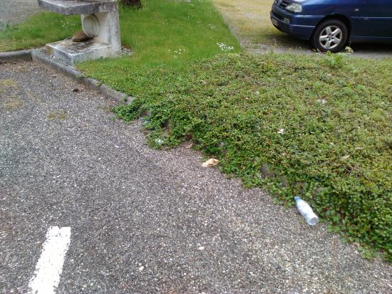 """Le Logis Des Pinsons : Zone parking & accès vers """"Entrée de nuit"""""""
