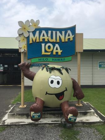 Keaau, Havaí: Mauna Loa