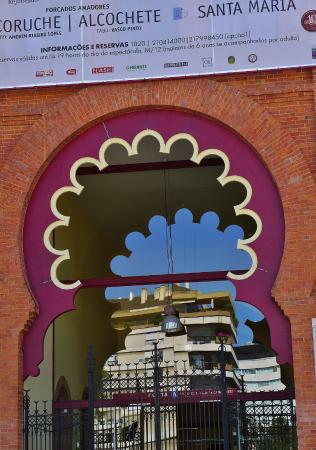 Campo Pequeno : Detail of an entrance door with reflection from adjoining buildings.
