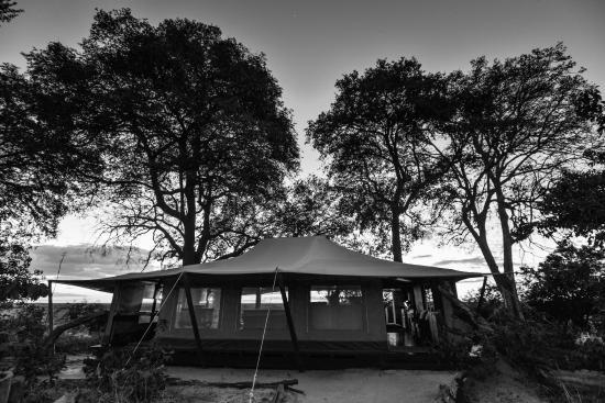 Linyanti Reserve, Botsuana: Linyanti Bush Camp