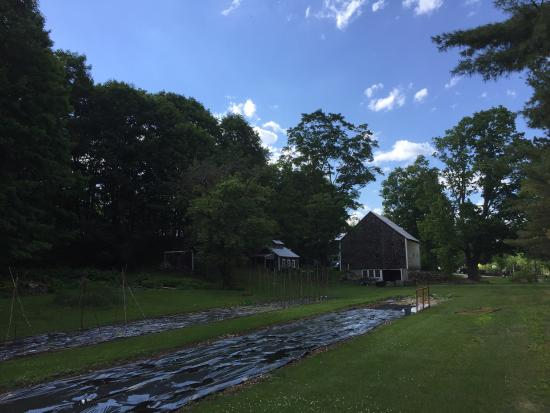Chocorua, NH: Bed and breakfast retreat at the Farmstand!
