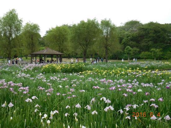 Shiki no Sato Park