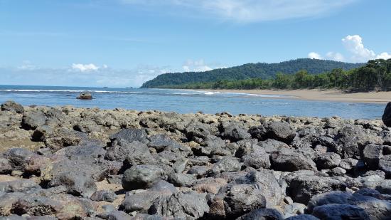 Drake Bay, Costa Rica: carey tours