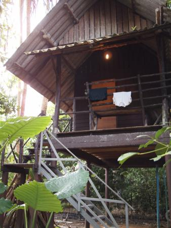 Khao Sok Valley Lodge: View of the cabin