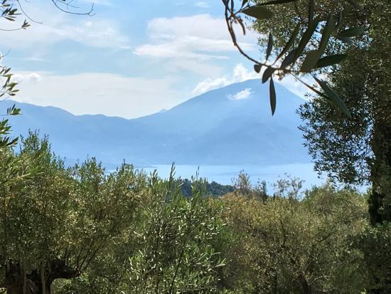Bosco, Włochy: photo0.jpg