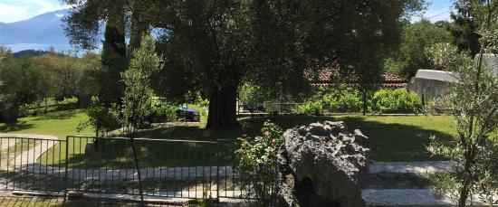 Bosco, Italia: photo2.jpg