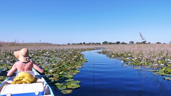 Vilanculos, Mozambique: Getting Canoed up the Govuro Waterways and Wetlands