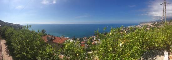 photo0.jpg - Picture of Le Terrazze, Sanremo - TripAdvisor