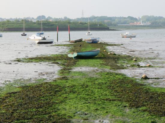 Manningtree, UK: The esuary as the tide goes out.