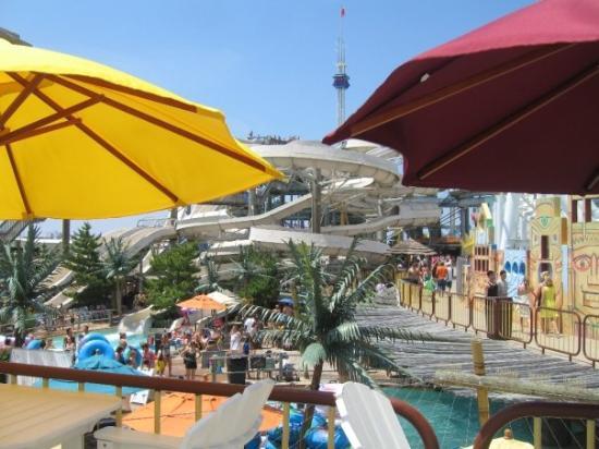 Sandy Shores Resort : Out door Fun
