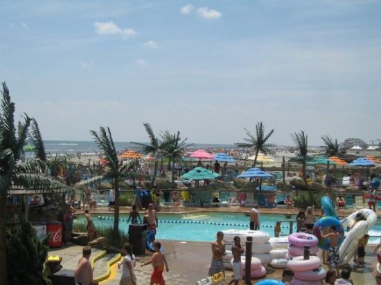Sandy Shores Resort : Happy Happy