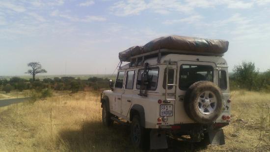 Alberton, Sudafrica: Travel Image By David, Land Rover Defender