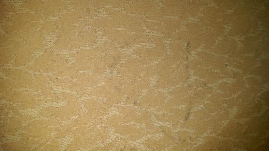 كنتري إن آند سويتس باي كارلسون فيربورن: Mysterious black stains throughout the carpet in the room we stayed in.