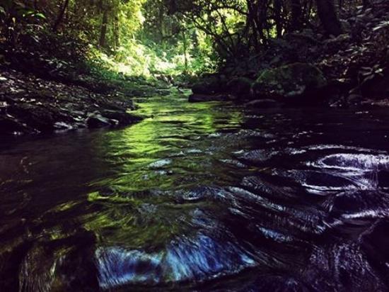 Blumenau, SC: Primeira cachoeira, da trilha das cachoeiras