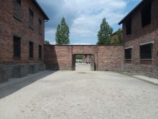 Risultati immagini per muro delle fucilazioni auschwitz