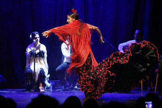Flamenco Barcelona Show Picture Of Flamenco Barcelona