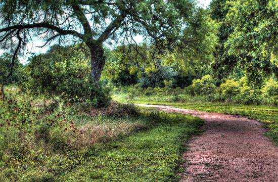 Crescent Bend Nature Park: lots of great walking trails.