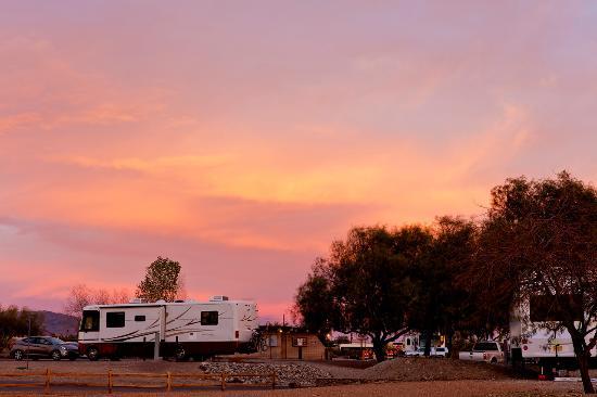RV camping at Lake Havasu State Park