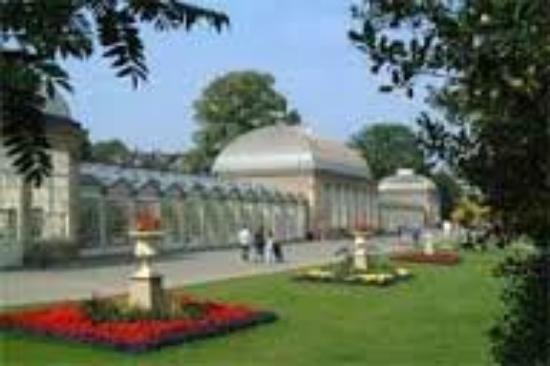 The Botanical Gardens: 2016-06-07-21-46-52-523784151_large.jpg