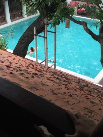 The Rim Resort: photo2.jpg