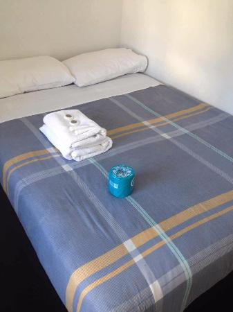 Princeton Auckland Backpackers Hostel: Bed