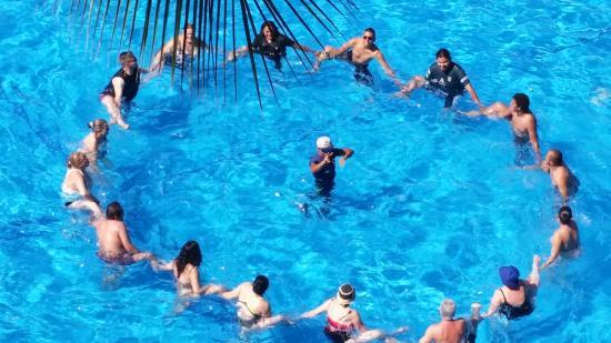 Las Palmas by the Sea: Water Aerobics