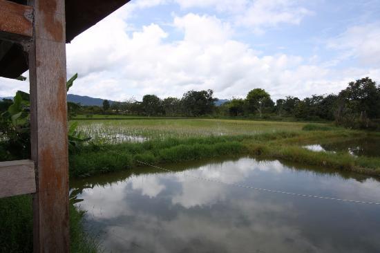 Tarawe Homestay