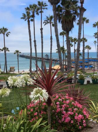 San Clemente, CA: There is a beautiful courtyard just outside the office.