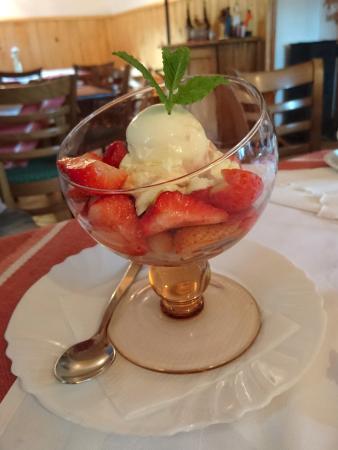 Medvode, Slovenia: Strawberries with vanilla ice cream