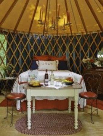 ‪‪Wild Cherry Resort‬: The cool decorated Yurt , that is really set in the woods‬
