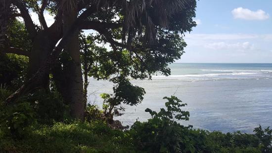 Kimbiji, Tanzania: view from restaurant area