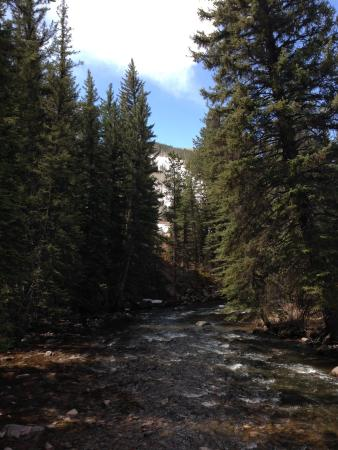 Vail Valley: spring thaw feeding the creek