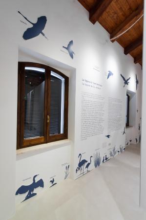 MuMA Museo del Mare e dei Maestri D'Ascia