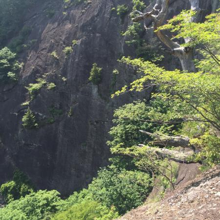 Chigootoshi