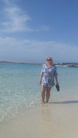 Asterias Beach Hotel Resmi