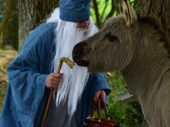 La Boissiere, France: Merlin l'enchanteur
