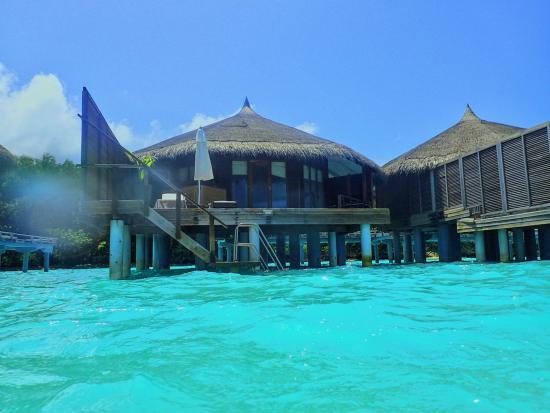 260 Water Villa With Jacuzzi Picture Of Kuramathi Island Resort