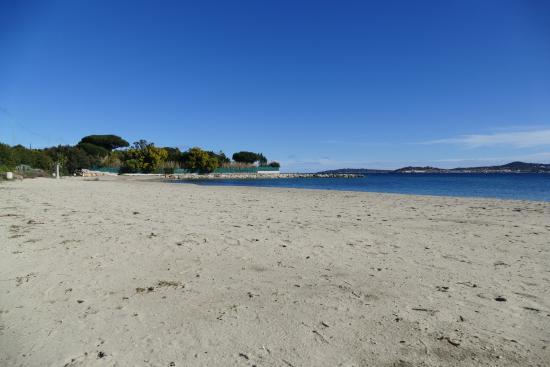 Big Pine Beach