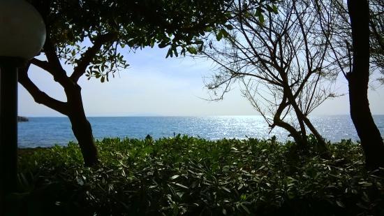 Vista Mare.
